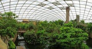 热带霍尔Gondwanaland,莱比锡 免版税图库摄影