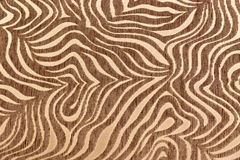 热带非洲毛皮纹理 异乎寻常的背景 米黄棕色背景 样式,自然背景,部族装饰品 免版税库存图片