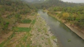热带风景河,农夫土地 股票视频