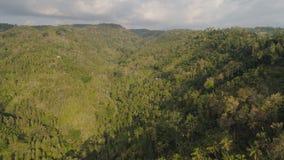 热带风景雨林和山 免版税库存图片