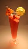 热带饮料的夏天 库存照片