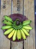 热带香蕉 免版税库存照片