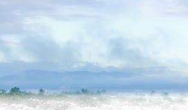 热带鬼魂 免版税图库摄影