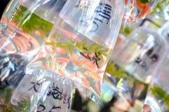 热带鱼在`金鱼街道`的袋子垂悬在香港` s旺角区 图库摄影