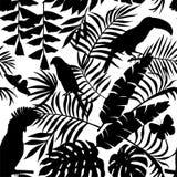热带鸟、蝴蝶和棕榈叶现出轮廓无缝 免版税库存图片