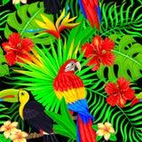 热带鸟叶子和花的无缝的样式在黑色 免版税库存图片