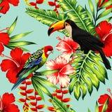 热带鸟和花无缝的背景 向量例证