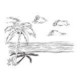 热带,海滩,剪影,剪贴美术 库存图片