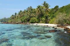 热带巴厘岛印度尼西亚的本质 库存照片