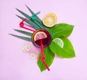 热带水果、柠檬、香蕉、植物、圆滑的人或者汁液与太阳镜在桃红色背景 平的位置,顶视图 库存图片