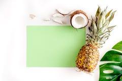 热带水果为夏天在白色背景顶视图大模型设计 免版税库存图片