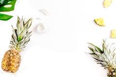 热带水果为夏天在白色背景顶视图大模型设计 库存图片