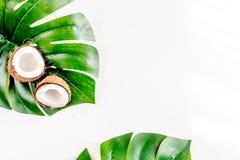 热带水果为夏天在白色背景顶视图大模型设计 库存照片