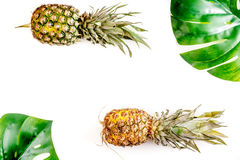 热带水果为夏天在白色背景顶视图大模型设计 免版税库存照片