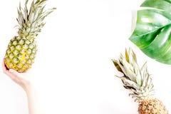 热带水果在手中在白色背景顶视图大模型的夏天设计的 免版税库存图片