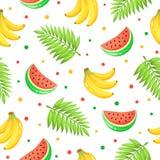 热带水果样式 免版税库存照片