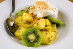 热带水果沙拉 免版税图库摄影