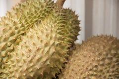 热带水果,留连果为生活,泰国 免版税图库摄影