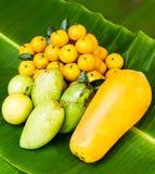 热带水果 图库摄影