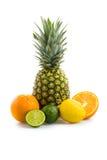 热带水果 库存图片