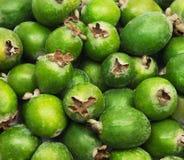 热带水果feijoa背景 免版税库存图片