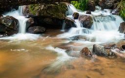 热带水秋天 免版税图库摄影