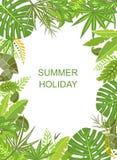 热带绿色垂直的海报 图库摄影