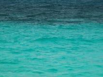 热带水 免版税库存照片
