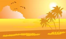热带1海滩的日落 免版税图库摄影