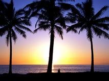 热带1 5的日落 免版税图库摄影