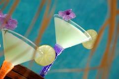 热带3个的鸡尾酒 库存图片