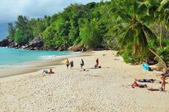 热带anse海滩海岛mahe含沙塞舌尔群岛的soleil 免版税库存照片