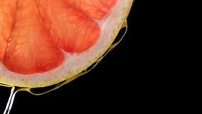 热带citurs果子切落在水中 库存照片