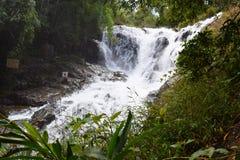 热带datanla瀑布在森林里, dalat,越南 免版税图库摄影