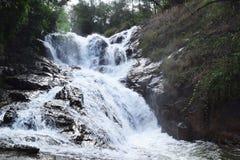 热带datanla瀑布在森林里, dalat,越南 免版税库存图片