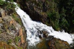 热带datanla瀑布在森林里, dalat,越南 免版税库存照片