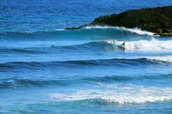 热带Jobos海滩在伊莎贝拉岛波多黎各 免版税库存照片