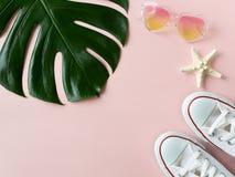 热带monstera叶子、太阳镜和海星在桃红色背景 库存照片