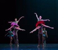 热情的女孩古典芭蕾` Austen汇集` 库存图片