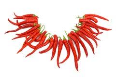 热查出的胡椒红色白色 图库摄影