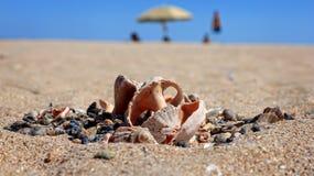 热海滩 库存照片