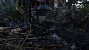 热灰和烟从篝火 热积累与全球性变暖 或者我们是这个问题的原因 影视素材