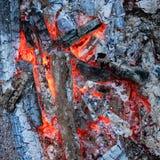 热炭烬 免版税库存图片