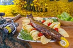 热熏制的鱼角膜白斑(沙磨机,鲈)秋天捕鱼 免版税库存图片
