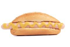 热狗或熏肉香肠用芥末 免版税库存照片