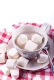 热的可可粉和蛋白软糖在大杯子 免版税库存图片