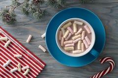 热的可可粉用蛋白软糖在圣诞节 免版税库存照片