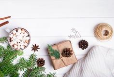 热的可可粉,冷杉分支,编织了在白色backgorund的毛线衣 免版税库存照片