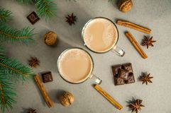 热的圣诞节饮料可可粉咖啡或巧克力用牛奶在一小杯 杉树分支,坚果,肉桂条八角 免版税库存照片