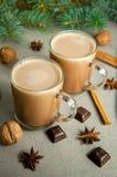 热的圣诞节饮料可可粉咖啡或巧克力用牛奶在一小杯 杉树分支,坚果,肉桂条八角 库存图片